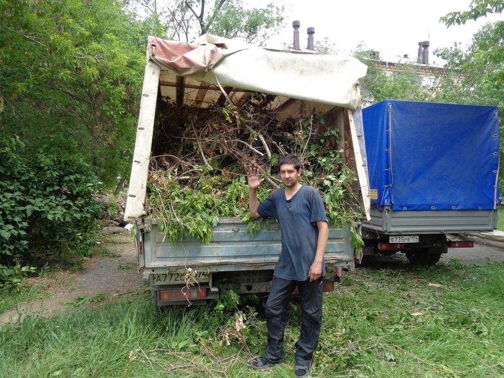 Переработка веток деревьев 164